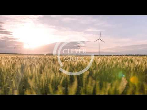 Wheat Field Windmill Sunlight Landscape Nature Agriculture Growth Footage Sky Renewable Energy