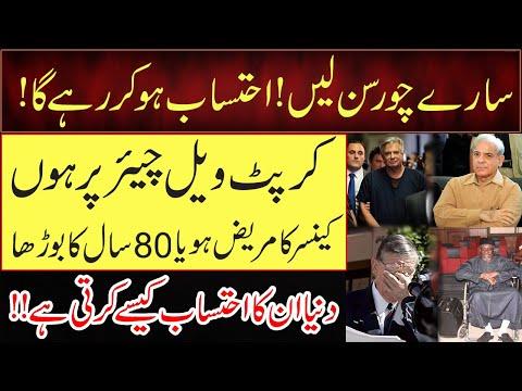 Shahbaz Sharif got Bail | 3 Shameful Examples for the System | Ameer Abbas