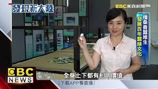 震澤古鎮「蠶絲之鄉」 老宅古巷交錯美景如畫