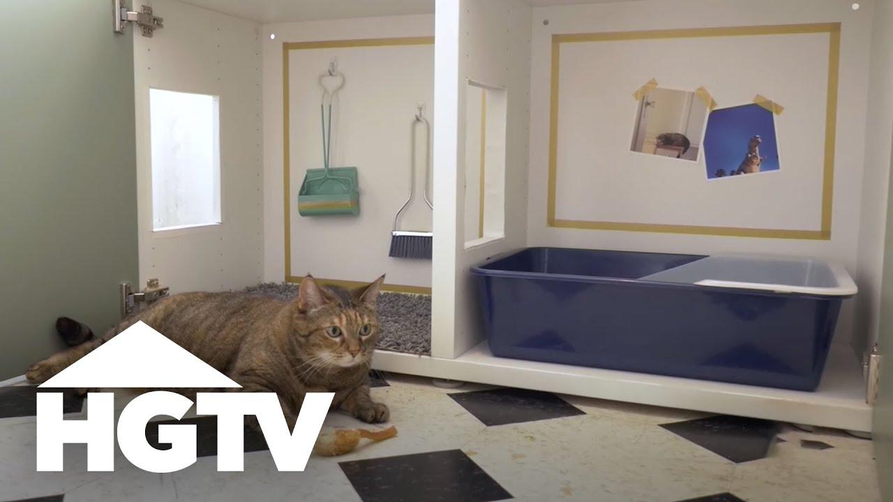 How To Hide A Cat Litter Box Hgtv