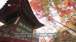[TV ZONE] Changdeokgung Palace, Full of Autumn Colors