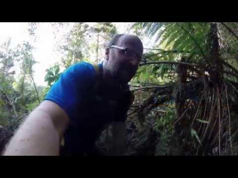 Lost and Found on Escarpment Track