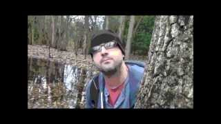 Breakin' The Eggs: Woods Edition......Robot Hilarious