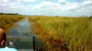 Everglades Miccosukee Indian Village Airboat Ride