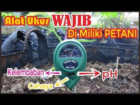 Petani WAJIB  Punya Alat Ini!!!!! ALAT Pengukur PH ,Kelembaban Tanah & Insensitas Cahaya