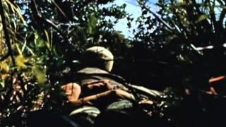 Vietnam elveszett filmek 4