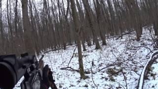 Охота на косулю с лайкой видео