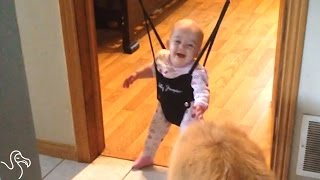 Dog Gives Baby A Bouncing Lesson