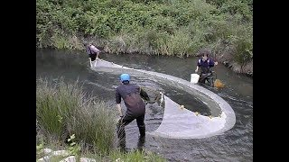 #7 Необычные случаи на рыбалке!
