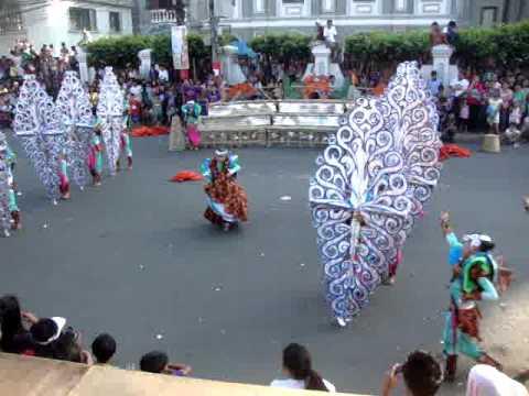 Alimango Festival Calauag Alimango-sugpo Festival