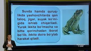 11-синф. Биология дарси. 04.05.2020 й.
