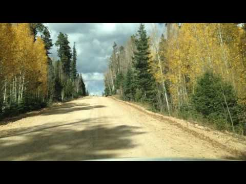 Driving on Forest Service Road 611