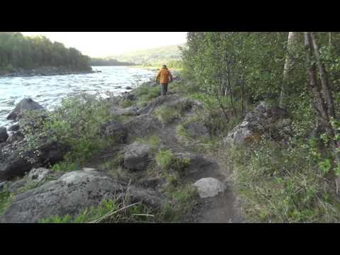 Norway Neiden salmon fishing 2013