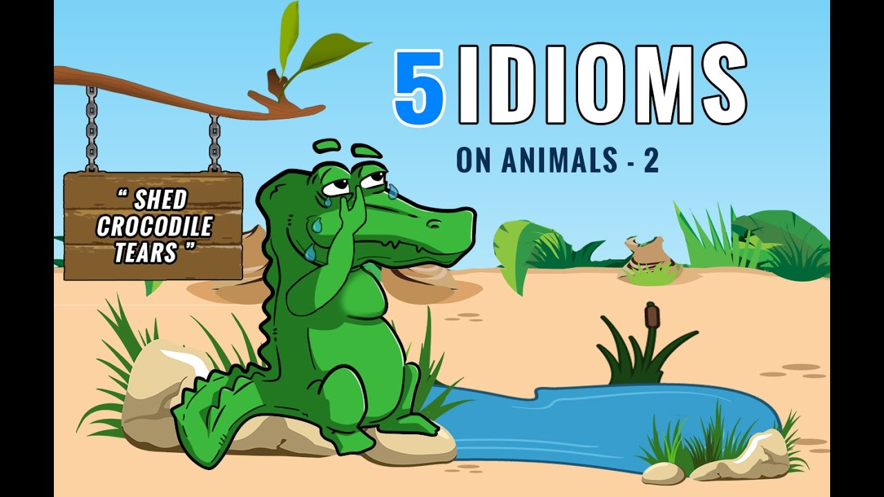 5 Intresting Animal Idioms Part 2 Youtube