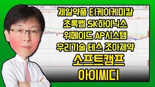 제일약품, 티케이케미칼, 초록뱀, SK하이닉스, 위메이…