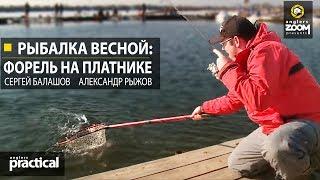 Рыбалка весной: форель на платнике. С. Балашов и А. Рыжов. Anglers Practical