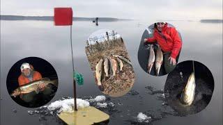 ПЕРВЫЙ ЛЁД Рыбинское водохранилище