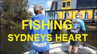 Fishing the Heart of Sydney COOKS RIVER | The Hook and The Cook