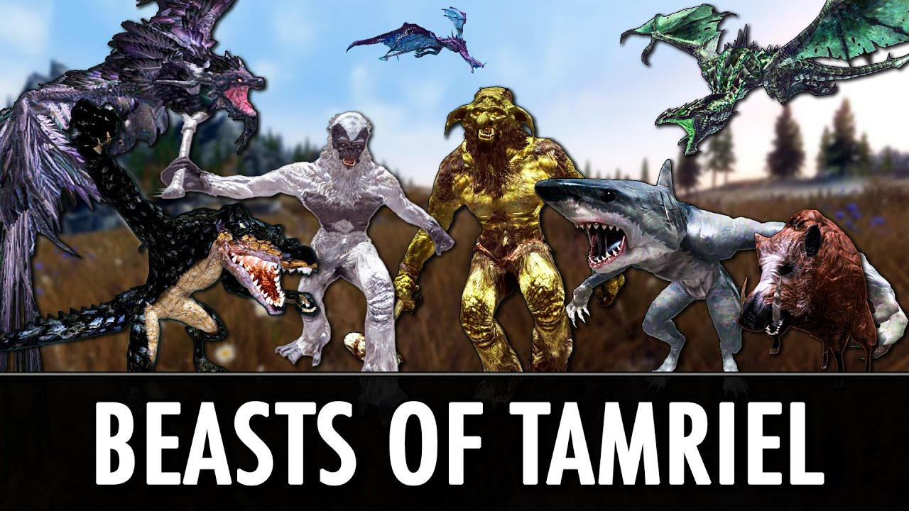 Skyrim Mods: Beasts of Tamriel & Diverse Dragons Collection 2 0 - YouTube