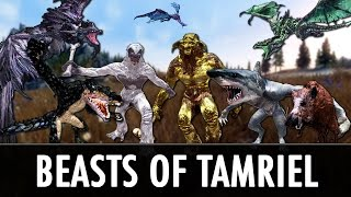 Skyrim Mods: Beasts of Tamriel & Diverse Dragons Collection 2.0