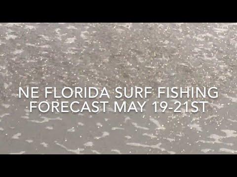 NE Florida Surf Fishing Forecast May 19-21st