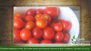 куплю помидоры оптом(http://agri-ug.com Для тех кто даёт объявления