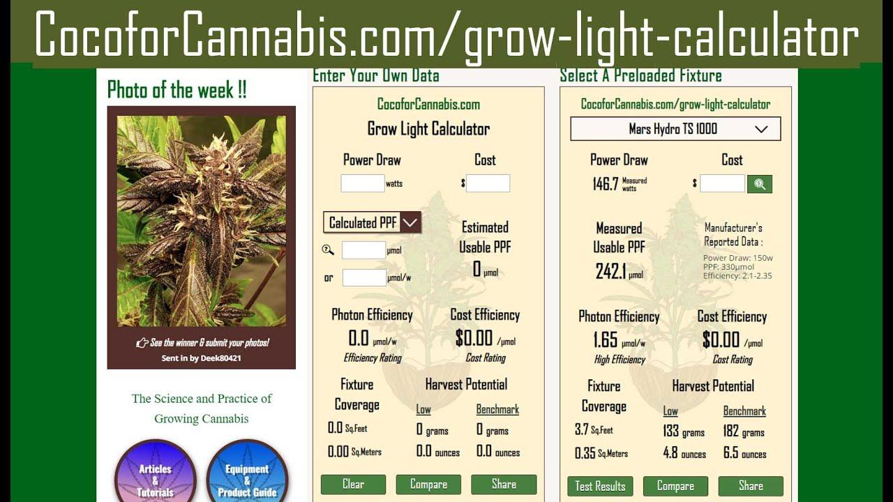 grow light calculator coco for cannabis