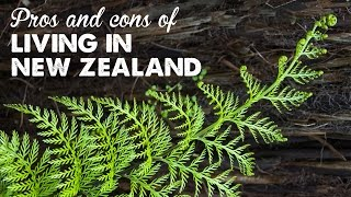 Pros & Cons of Living in New Zealand | A Thousand Words thumbnail