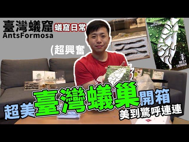 超美臺灣蟻巢開箱|細工、實用、美觀|【臺灣蟻窟】蟻窟日常-螞蟻用品開箱(上)