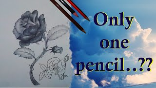 How to draw a rose flower easy step by step using pencil