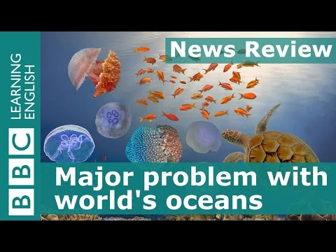 BBC News Review: Major problem with world's oceans