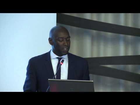 "Workshop"" Accès au marché des capitaux "": Ibukun Adebayo , LSEG"