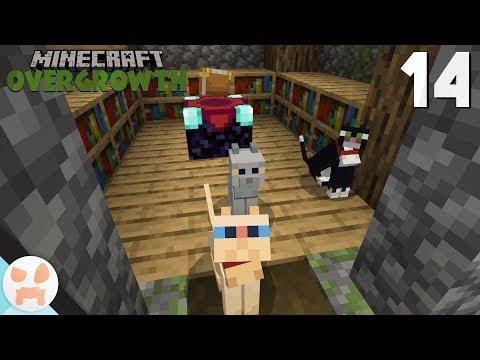 Download Minecraft Cats Pandas Update Gameplay Review Panda Taming