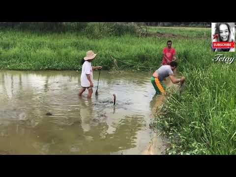 BUHAY SA BUKID (LIFE AT THE FARM) part 1 || Esperanza Agusan del Sur