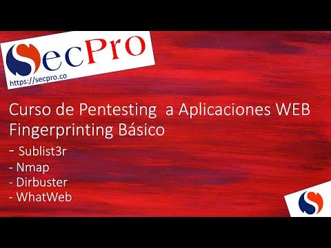 Web Fingerprinting Básico (Toma de Huellas del Sitio)