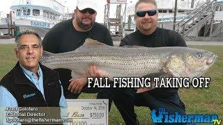 October 18, 2018 Long Island Metro Fishing Report with Fred Golofaro
