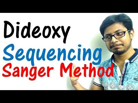 Sanger sequencing method - dideoxy sequencing of DNA