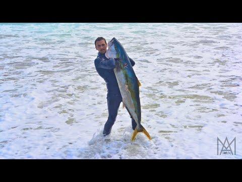 Spearfishing New Zealand Ep. 2: Solo to the Coromandel