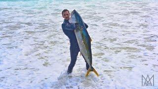 Spearfishing New Zealand Ep. 2: Solo to the Coromandel thumbnail