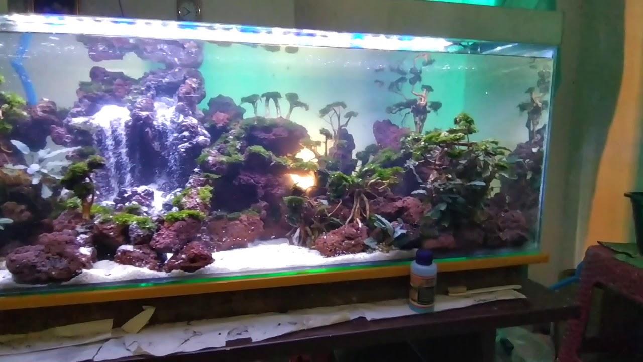 Aquascape tema air terjun - YouTube