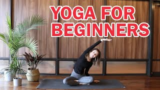 A great yoga class for those new to yoga! We will go over basic poses, get a good stretch, and even work on some balance postures!