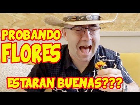 Probando FLORES y COMIDA SALUDABLE en Elektra Madrid