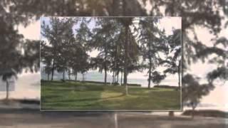 Thuyền viễn xứ ( Phạm Duy) -Bài hát cho những ai tha hương - Di Hạ