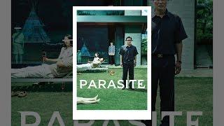 parazita számok