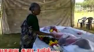 singam tamilan   ,,,,,     ainmk  thevar  boys  kayathar  thirumangalakurichi