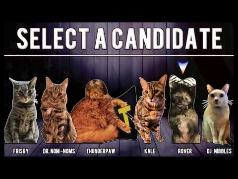 Livestream #10: Vote Rover for Cat President!