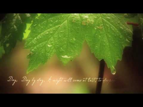 Falling with the Rain on Vimeo