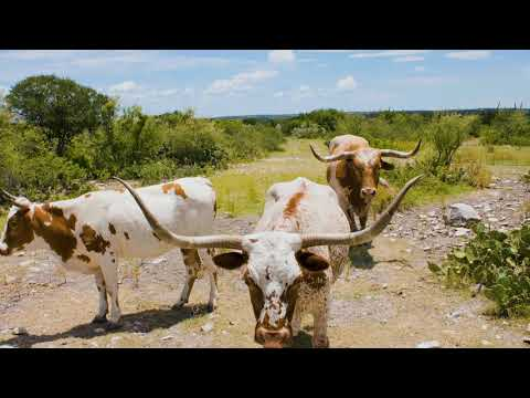 Rio Diablo Ranch | South Texas | Val Verde County