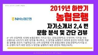 2019년 하반기 농협은행 자기소개서 2,4 번 문항 분석 및 간단 리뷰