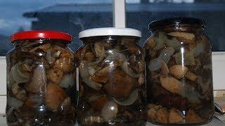 Жареные грибы на зиму